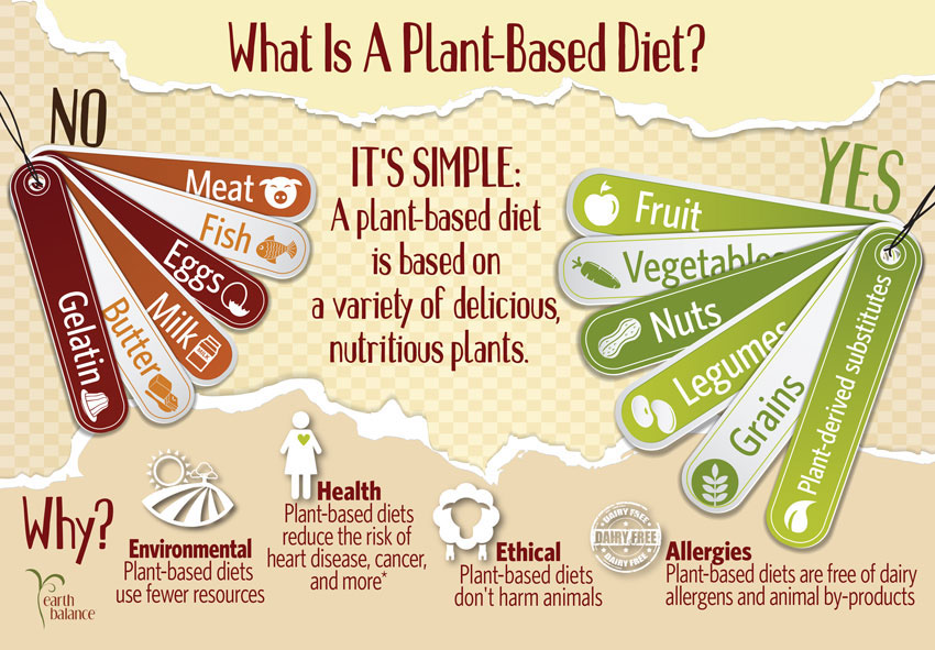 healthy plant based diet linked with substantially lower
