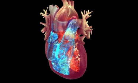 Young Adults\' Heart Structure and Function May Change because of ...
